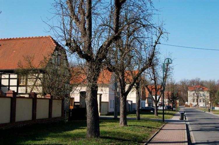 Dreiskau-Muckern, Dorfansicht 2